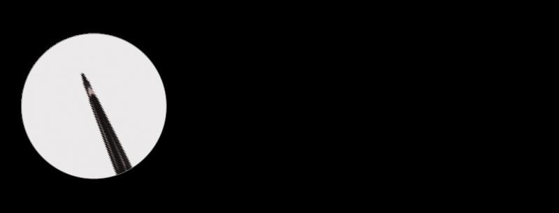 PALINE GEODETICHE